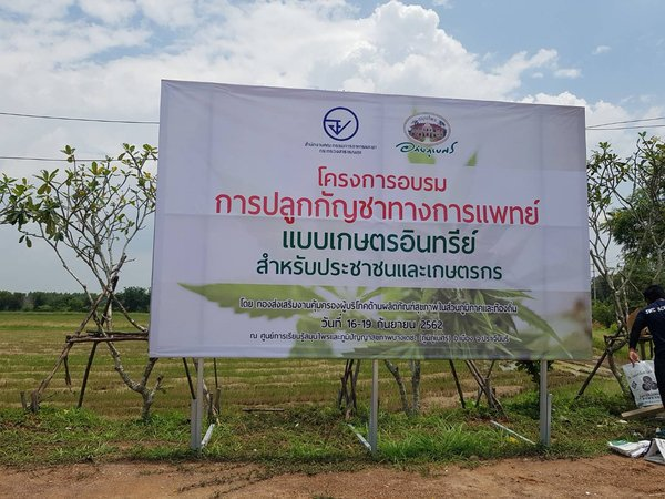 This hospital in Thailand hosts organic farming classes for medical cannabis